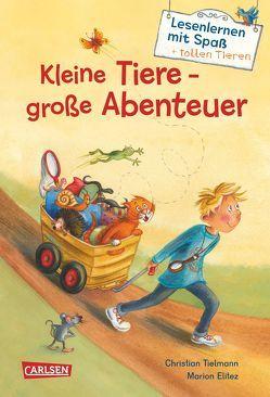 Kleine Tiere – große Abenteuer (Lesenlernen mit Spaß + tollen Tieren 1) von Elitez,  Marion, Tielmann,  Christian
