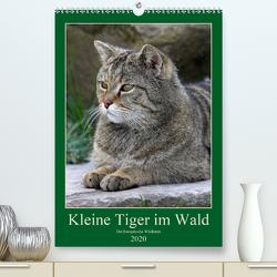 Kleine Tiger im Wald (Premium, hochwertiger DIN A2 Wandkalender 2020, Kunstdruck in Hochglanz) von Brack,  Roland