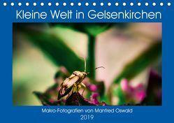 Kleine Welt in Gelsenkirchen (Tischkalender 2019 DIN A5 quer)