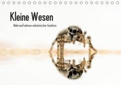Kleine Wesen – Makroaufnahmen von einheimischen Insekten (Tischkalender 2018 DIN A5 quer) von Voigt,  Andreas