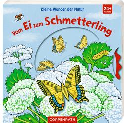 Kleine Wunder der Natur: Vom Ei zum Schmetterling von Brauer,  Sybille