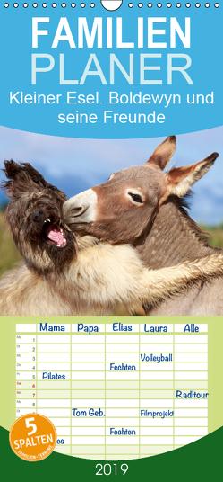 Kleiner Esel. Boldewyn und seine Freunde – Familienplaner hoch (Wandkalender 2019 , 21 cm x 45 cm, hoch) von Stanzer,  Elisabeth