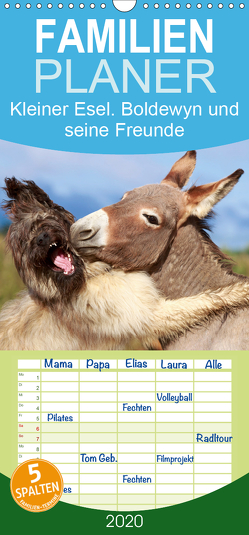 Kleiner Esel. Boldewyn und seine Freunde – Familienplaner hoch (Wandkalender 2020 , 21 cm x 45 cm, hoch) von Stanzer,  Elisabeth