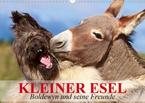 Kleiner Esel. Boldewyn und seine Freunde (Wandkalender 2020 DIN A3 quer) von Stanzer,  Elisabeth