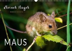 Kleiner Nager – Maus (Wandkalender 2018 DIN A3 quer) von Roder,  Peter
