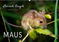 Kleiner Nager – Maus (Wandkalender 2020 DIN A2 quer) von Roder,  Peter