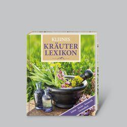 Kleines Kräuterlexikon von Lotz,  Brigitte, Rausch,  Andrea