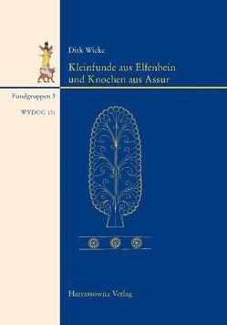 Kleinfunde aus Elfenbein und Knochen aus Assur von Wicke,  Dirk