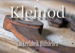 Kleinod – Zuckerfabrik Oldisleben (Wandkalender 2019 DIN A2 quer) von Flori0