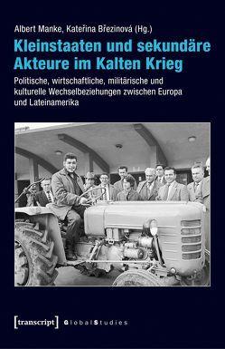Kleinstaaten und sekundäre Akteure im Kalten Krieg von Brezinová,  Katerina, Greiner,  Bernd, Manke,  Albert