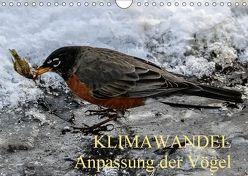 KLIMAWANDEL Anpassung der Vögel (Wandkalender 2018 DIN A4 quer) von Hoville,  Wido