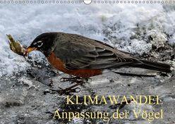 KLIMAWANDEL Anpassung der Vögel (Wandkalender 2019 DIN A3 quer) von Hoville,  Wido