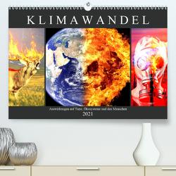 Klimawandel. Auswirkungen auf Tiere, Ökosysteme und den Menschen (Premium, hochwertiger DIN A2 Wandkalender 2021, Kunstdruck in Hochglanz) von Hurley,  Rose