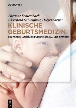 Klinische Geburtsmedizin von Schlembach,  Dietmar, Schleussner,  Ekkehard, Stepan,  Holger