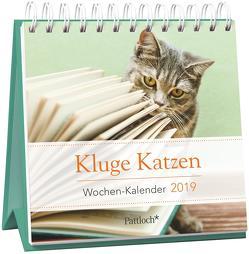Kluge Katzen – Mini-Kalender 2019