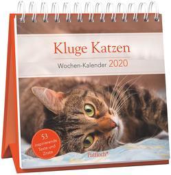 Kluge Katzen – Wochen-Kalender 2020