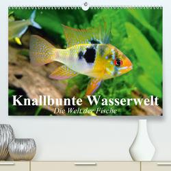 Knallbunte Wasserwelt. Die Welt der Fische (Premium, hochwertiger DIN A2 Wandkalender 2021, Kunstdruck in Hochglanz) von Stanzer,  Elisabeth