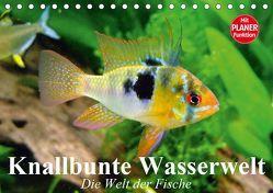 Knallbunte Wasserwelt. Die Welt der Fische (Tischkalender 2019 DIN A5 quer)