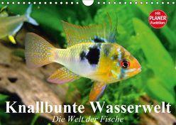 Knallbunte Wasserwelt. Die Welt der Fische (Wandkalender 2019 DIN A4 quer) von Stanzer,  Elisabeth