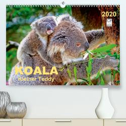 Koala – kleiner Teddy (Premium, hochwertiger DIN A2 Wandkalender 2020, Kunstdruck in Hochglanz) von Roder,  Peter