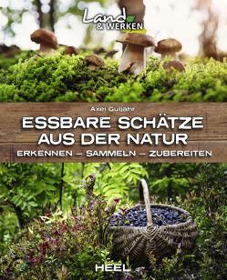 Kochen mit Gratisprodukten der Natur von Gutjahr,  Axel