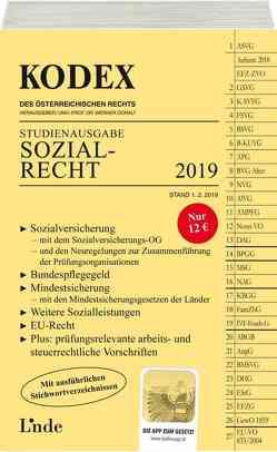 KODEX Sozialrecht 2019 von Brameshuber,  Elisabeth, Doralt,  Werner
