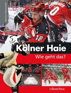 Kölner Haie – Wie geht das?
