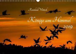 Könige am Himmel (Wandkalender 2019 DIN A3 quer)
