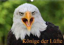 Könige der Lüfte (Wandkalender 2021 DIN A3 quer) von Lindert-Rottke,  Antje