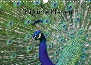 Königliche Pfauen (Wandkalender 2018 DIN A4 quer) von Kattobello,  k.A.