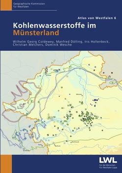 Kohlenwasserstoffe im Münsterland von Coldewey,  Wilhelm Georg, Dölling,  Manfred, Hollenbeck,  Iris, Melchers,  Christian, Wesche,  Dominik