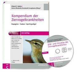 Kompendium der Ziervogelkrankheiten von Kaleta,  Erhard F., Krautwald-Junghanns,  Maria-Elisabeth, Kummerfeld,  Norbert, Pees,  Michael