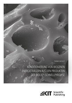 Konditionierung von biogenen Energieträgern aus den Produkten der bioliq®-Schnellpyrolyse von Nicoleit,  Thomas