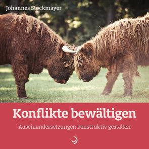 Konflikte bewältigen von Stockmayer,  Johannes