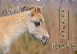 Konik-Pferde (Wandkalender 2021 DIN A2 quer) von Kulartz,  Rainer, Plett,  Lisa