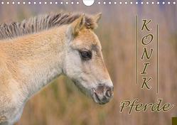 Konik-Pferde (Wandkalender 2021 DIN A4 quer) von Kulartz,  Rainer, Plett,  Lisa