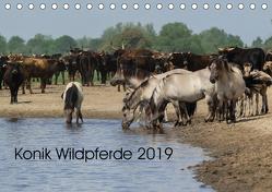 Konik Wildpferde 2019 (Tischkalender 2019 DIN A5 quer) von Gauger,  Jenny