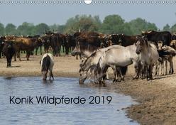 Konik Wildpferde 2019 (Wandkalender 2019 DIN A3 quer) von Gauger,  Jenny