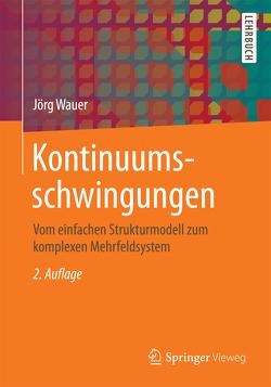 Kontinuumsschwingungen von Wauer,  Jörg