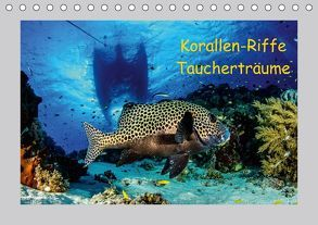 Korallen-Riffe Taucherträume (Tischkalender 2018 DIN A5 quer) von Caballero,  Sascha