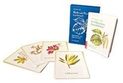 Körblersche Baumblüten® Kartenset von Maiss,  Christiane