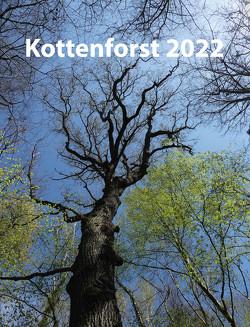 Kottenforst 2022 von Hensgen,  Anne