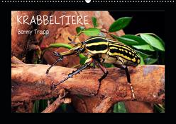 Krabbeltiere (Wandkalender 2019 DIN A2 quer) von Trapp,  Benny