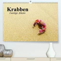 Krabben. Lustige Aliens (Premium, hochwertiger DIN A2 Wandkalender 2020, Kunstdruck in Hochglanz) von Stanzer,  Elisabeth