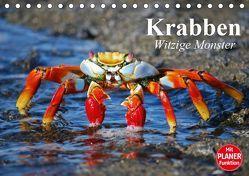 Krabben. Witzige Monster (Tischkalender 2019 DIN A5 quer) von Stanzer,  Elisabeth