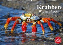 Krabben. Witzige Monster (Wandkalender 2019 DIN A2 quer) von Stanzer,  Elisabeth