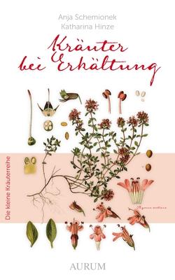 Kräuter bei Erkältung von Hinze,  Katharina, Schemionek,  Dr. Anja