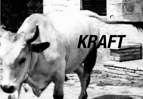 Kraft – Moč von Hofbauer,  Andreas L, Sturm,  Niko, Zekoff,  Josef