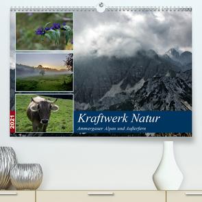 Kraftwerk Natur (Premium, hochwertiger DIN A2 Wandkalender 2021, Kunstdruck in Hochglanz) von Wittmann,  Steffen