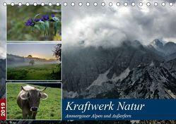 Kraftwerk Natur (Tischkalender 2019 DIN A5 quer) von Wittmann,  Steffen